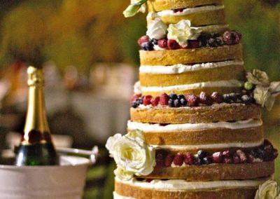 lecirque-cake-torte-15